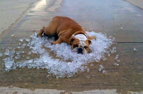 Chceli by ste klimatizáciu? Vieme čo by ste mali vedieť