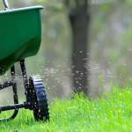 Hnojenie trávnika. Starostlivosť o trávnik