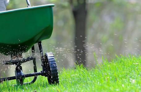 starostlivost-o-travnik-hnojenie