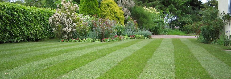 Dôležitá starostlivosť o trávnik je aj prevzdušnenie trávnika