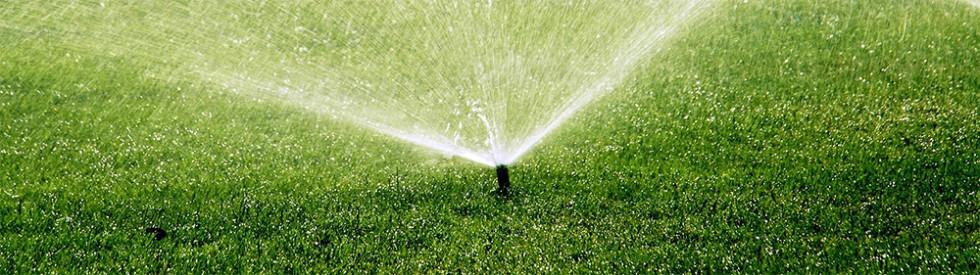Starostlivosť o trávnik - ako správne zavlažovať trávnik