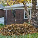 Čo s opadanými listami – ako na lístie v jeseni