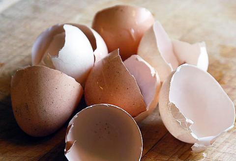 škrupiny z vajec