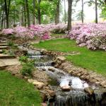 Jar v záhrade. Čo treba urobiť na prelome marca a apríla?