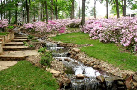 jar v zahrade