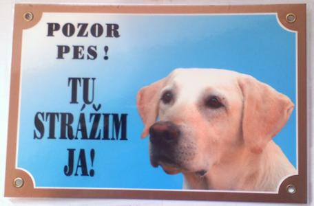 Strážny pes chráni nielen majetok