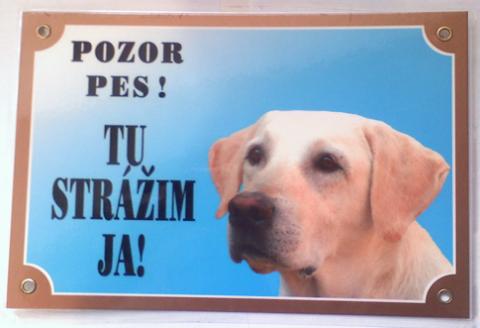 strazny-pes